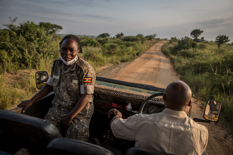 A park ranger leads tourists at Murchison Falls, Uganda's biggest national park.  Poaching has increased in Murchison Falls since the pandemic began, while Uganda is expected to see tourism revenue decline by more than one billion dollars this year.
