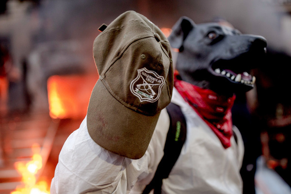 A protester wearing a dog head costume is seen during a protest against police brutality in Santiago.