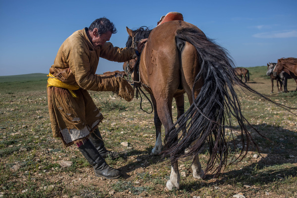 A local man wearing a traditional deel seen mounting a saddle on his horse next to the small town of Adaatsag in the Dundgovi Province in Central Mongolia.
