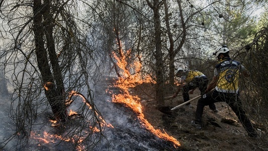 Volunteers from the Syrian Civil Defense seen extinguish a wild fire in the forest that started from unknow reasons near Afrin in northern Syria.
