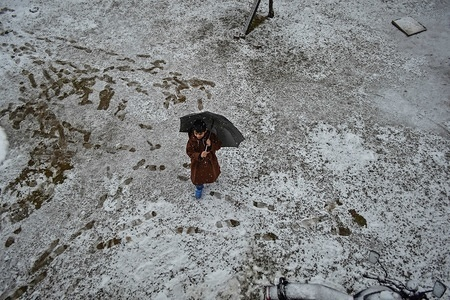 A Kashmiri boy seen walking with an umbrella through a snow covered garden during fresh snowfall  in Srinagar, Indian administered Kashmir. Fresh snowfall lashed most parts of the Kashmir Valley as the minimum temperatures rose above the freezing point. The weather men forecast improvements in weather conditions.