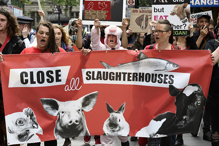 Activists shout slogans while holding a banner that reads Close all slaughterhouses during the march. Animal rights activists marched through central London to demand the closing of the slaughterhouses and to claim the abolition of slavery of the animals.