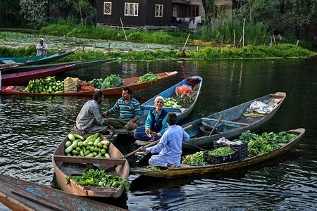 Vegetable vendors gather with their boats laden with vegetables at the floating vegetable-market at the interiors of Dal lake in Srinagar, Kashmir. Dal Lake is famed for its floating vegetable market, which supplies varieties of vegetables all the year to many towns across the Kashmir valley. This floating vegetable market comprises many floating gardens as well local varieties of organic vegetables. It is one of the very famous floating markets in the world. The vegetable market opens at 4'o clock in the morning even before the sun rises and closes within the next two hours.