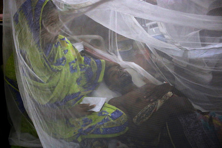 To help fight spread of Dengue fever, mosquito nets have been put up in a ward at the city's Shaheed Suhrawardy Medical Hospital. Cases of Dengue infections have been on the rise, particularly in the capital since March this year.