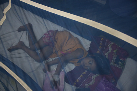 A child infected with dengue fever takes treatment under a mosquito net at the hospital in Dhaka. A record number of dengue cases have been reported across the country this year, with 9,256 patients recorded since January 1, according to the Directorate General of Health Services (DGHS). Eight of the patients have lost their lives between April and July 25, according to latest DGHS control room data.