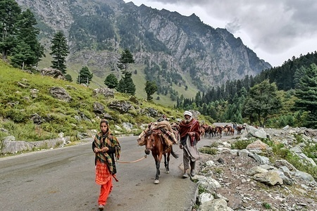 Kashmiri nomads walk with their herd of horses on a cloudy day at the tourist resort Sonamarg about 90kms from Srinagar, the summer capital of J&K, India. As the rains continued for the fourth day on Sunday, the skies remained cloudy in the second half of the day. The weather department has predicted more precipitation in many parts of the valley in the next 24 hours.