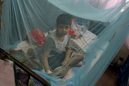 A kid infected with dengue fever receives treatment under a mosquito net at a hospital in Dhaka. A total of 27,437 people have been affected by dengue this year from January 1st till August 5th.