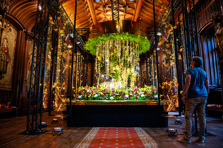 A floral display is pictured inside the Ghotic room of Brussels' town hall. Flower time is a biennial initiative that was launched in 2013 by the City of Brussels and the ASBL (non-profit organization) Tapis de Fleurs de Bruxelles. Under the theme 'A World of Floral Emotions', more than 30 top florists from 13 countries decorated the magnificent rooms of Brussels City Hall, a Unesco masterpiece of Gothic architecture. Brussels' famous Grand Place hosted for the occasion a stunning flower arch composed of 500 fuchsias. This year, the artistic direction is once again in the hands of the world-famous Floraliën. The famous Manneken-Pis gets dressed up for Flower time by floral artist Geoffroy Mottart.