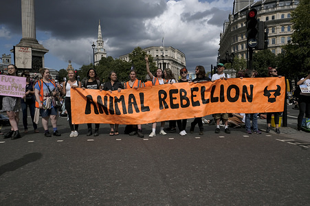Activists hold a banner saying Animals rebellion during the protest in London. Animal rights activists marched in central London to protest against animal cruelty and also to demand an end on fishing, animal farming and animal experiments.