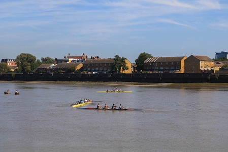 Rowing boats on the River Thames close to Putney on a warm sunny day in London.