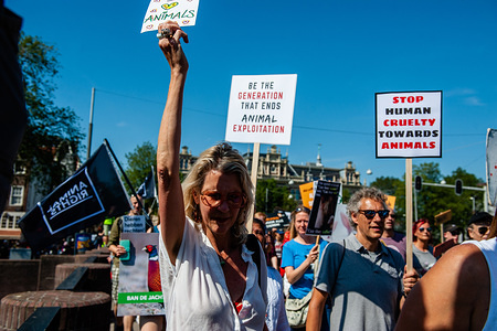 Activists hold placards during the demonstration. This is the second time that the Animal Rights March has taken place in the Netherlands. Thousands of animal lovers gathered in Amsterdam to stand up and speak out against all forms in which animals are used, abused and exploited.