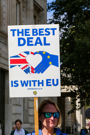 An anti-Brexit protester holding a placard in Westminster on the first day of prorogation of the Parliament which is now suspended until 14 October.