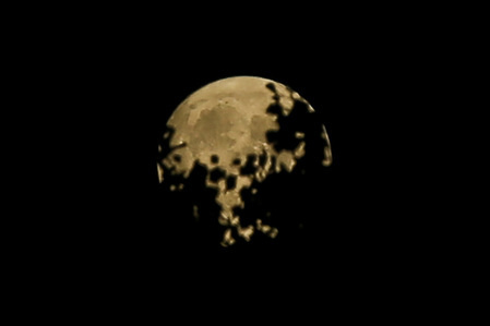 A Harvest Moon is seen on Friday the 13th in London, UK, which only happens once every 20 years on average. Stargazers were last treated to a full moon on the spooky date in October 2000 and the next full moon on Friday the 13th will appear on August 13, 2049.