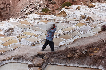 A worker is seen hauling salt at Salineras de Maras. The Salineras de Maras is located along the slopes of Qaqawiñay Mountain, at an elevation of 3,380 m in the Urumbamba Valley, near the town of Maras. It is made up of more than 3 thousand natural salt wells.  Each of the wells has a dimension of 5 square meters. The 3,000 pools are fed by an underground hypersaline spring that originated around 110 million years ago during the formation of the Andes Mountains. The most of villagers of Maras work here.