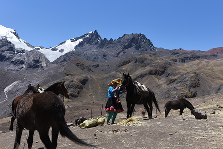 A villager is seen with her horses at the  Siete Colores mountain. Every day, dozens of inhabitants from nearby villages come with their horses and alpacas to the Vinicunca, also called Seven Colours, a mountain in Peru with an altitude of 5,036 meters above sea level, to help tourists on the ascent to the top. In the last decade, thanks to tourism, the villagers of these small communities have improved their living conditions.