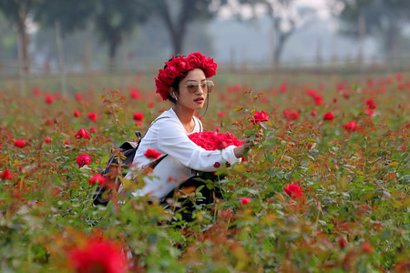 A woman sits in the middle of flowers at Savar, a small village near in Dhaka. Rose production is a blooming business ahead of Victory Day, International Mother's Language day and spring season where people use flowers in Bangladesh. Rose farmers in Savar are very busy preparing for those events.