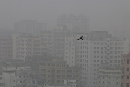 A bird flies in a foggy weather during a  cold wave in Dhaka. A biting cold spell continues to sweep across northern Bangladesh and a few other parts of the country although mercury readings point to an end to a cold wave.