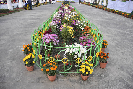 A view of a flower installation during the fair. Kolkata flower show was organized by West Bengal forest department at Eden garden. This is the 17th fair. In this fair celebrities, school and college students participate in flower installations and many cultural programs.