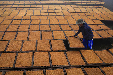 A farmer dries tobacco in Kampung Tembakau, Sumedang Regency. An increase in tobacco or cigarette excise tax by 23 percent in Indonesia makes tobacco farmers worried about a decrease tobacco absorption from the tobacco product industry.