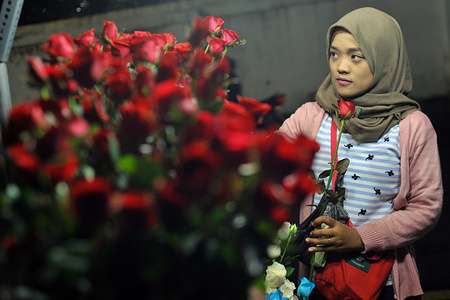 An Indonesian Muslim woman buys flowers for Valentine's Day celebration. Even though Valentine's Day is a Christian tradition, Muslims in Indonesia embrace the day that celebrates romance and love.