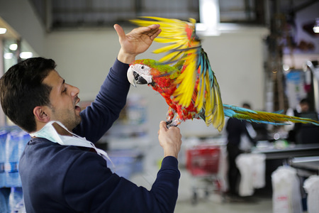 A Palestinian man displays a parrot for sale at a supermarket in Gaza City.