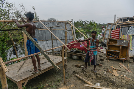 NORTH 24 PARGANAS, INDIA - MAY 25, 2020: Men are seen repairing their damaged house in the aftermath of cyclone Amphan in a village of South 24pgs. Amphan made landfall on West Bengal near the Sundarbans between Digha and Hatiya on 20 May, with wind gusts along coastal areas measured at 150ñ160 km/hr. Cyclone Amphan, one of the strongest storms in recent memory to churn through the Bay of Bengal killing more that 80 people and leaving the entire state devastated.