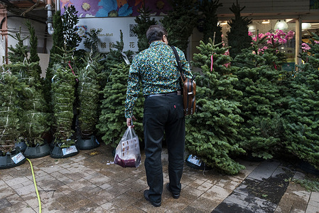 A customer is seen looking at Christmas trees for sale in Hong Kong.