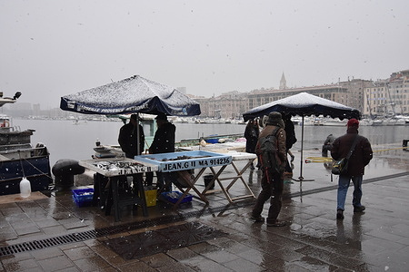Fishermen sell their fish at the Vieux-Port of Marseille during winter season. Some snowflakes fell on the  Phocaea City.