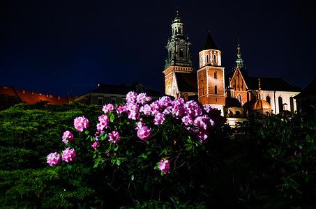 A view of the Wawel Royal Castle in Krakow.