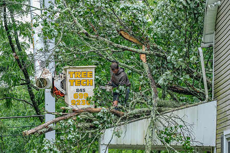 A worker removes a tree that fell on a house in Milford after a strong storm caused by Tropical Storm Elsa struck the area.  Damage from Tropical Storm Elsa hit the mid-Atlantic states Thursday night and Friday morning.