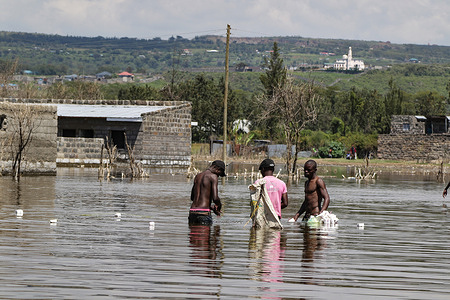 Fishermen are seen laying nets at a flooded area now part of Lake Nakuru. Fishing is outlawed on the lake but despite that, fishermen continue fishing risking arrest and prosecution. Lake Nakuru continued flooding has led to displacement of hundreds of people from their homes. Sources indicate lakes in Rift Valley are flooding because of the impact of climate change.