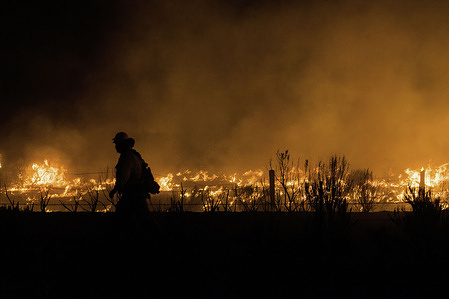 A firefighter walks past flames from the Dixie Fire in California.The Dixie Fire has reached highway 395, as of today, Cal Fire reports that the Dixie Fire has now grown to a total of 604,511 acres (around 944 square miles). It remains 31 percent contained. The cause of the fire is still being investigated.