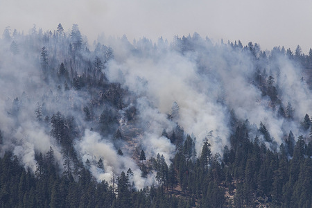 Clouds of smoke as trees burn on the mountain side.  A spot fire from the Dixie Fire spreads to the highway 395. Cal Fire reports that the Dixie Fire has now grown over 600,000 acres. The cause of the fire is still being investigated.