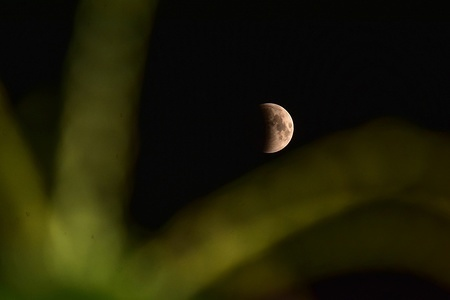 A partial lunar eclipse as seen from Srinagar, India. Sky watchers around the world have begun watching a complete lunar eclipse that is the longest of this century which coincides with Mars' closest approach in 15 years.